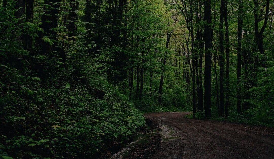 Best Parks in Navarre