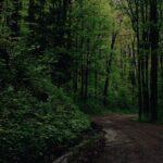 best parks of Navarre